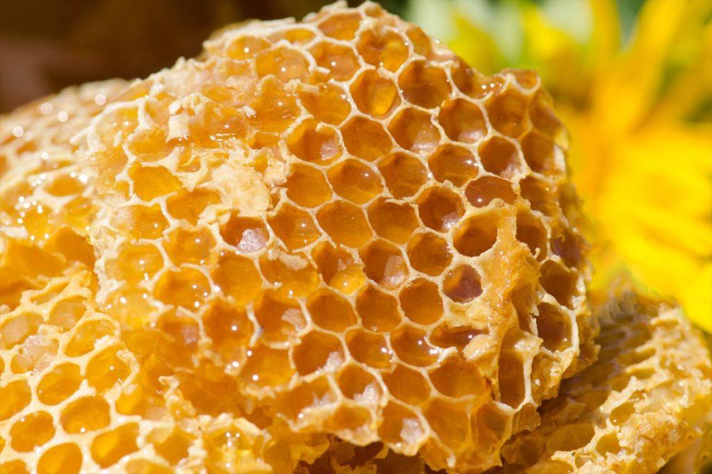 蜂蜜に本来賞味期限はない